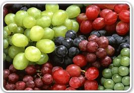 Precios Aditivos Alimenticios Grado USP